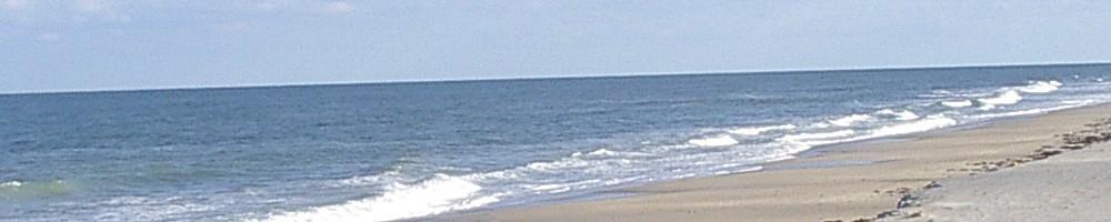 calm surf